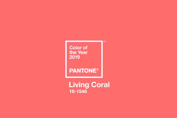 Pantone Living Coral: color del año 2019